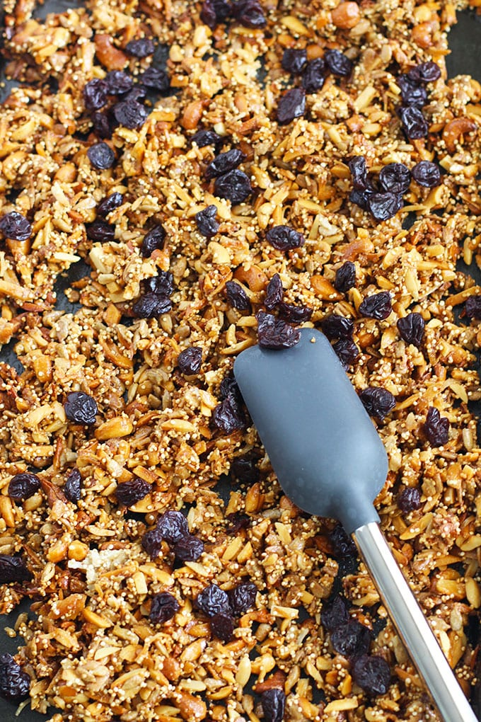 Tart Cherry and Almond Protein Granola